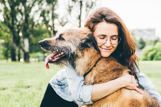 Radar Pet: adoção de animais de companhia é tendência no Brasil
